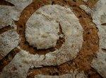 Хлеб из спельты с льняным семенем