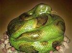 Торт Змея (мастер-класс)