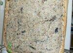 Грибной хлеб с чесноком в хлебопечке