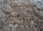 Адыгейская соль Абадзехская