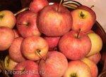 Apfelmus (яблочное пюре)