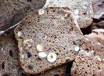 Хлеб ржаной Орешек
