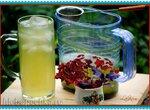 Тонизирующий напиток из кислицы