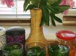 Летний освежающий напиток из мяты, мелиссы и смородины