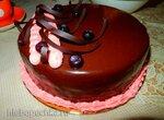 Муссовый торт Черника в шоколаде