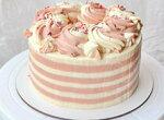 Бисквитный торт Ширван