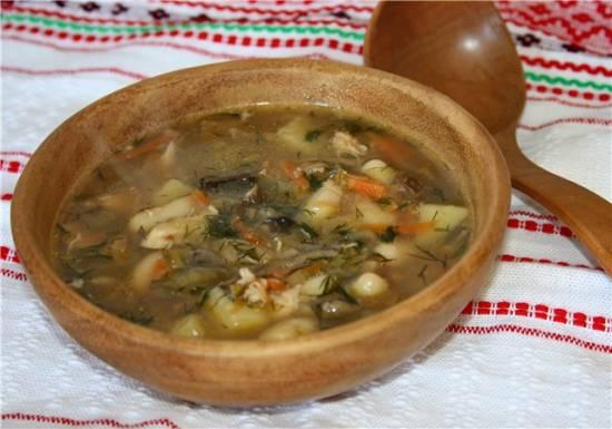 Грибной суп в мультиварке Brand 37502
