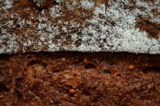Хлеб с инжиром / Pan coi fichi