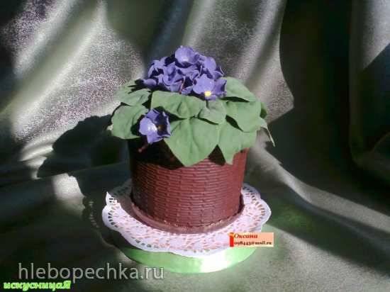 Торт Горшок фиалок (мастер класс)