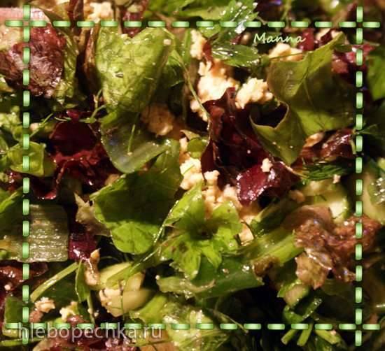 Салат зеленый с паниром