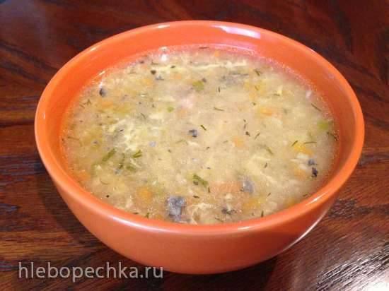 Кудрявый суп из рыбных консервов (Steba DD1)