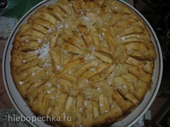 Яблочный пирог Torta di melle a raggi