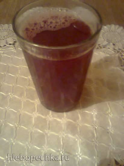 Напиток шелковица-апельсин (блендер-суповарка Tristar BL - 4433)