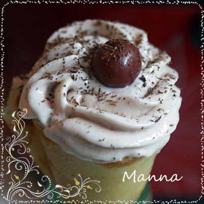Мороженое Творожно-фруктовое в мороженице Brand 3811