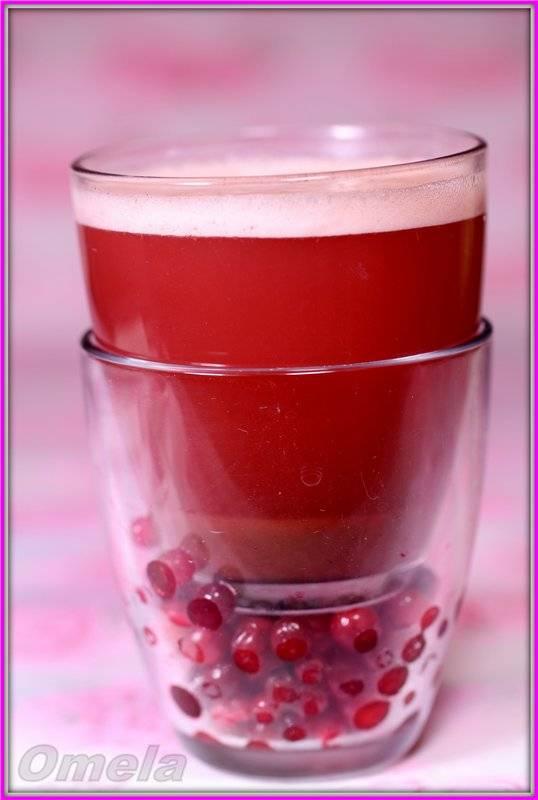 Ватутэл - напиток народов Крайнего Севера (мультиблендер Profi Cook PC-МСМ1024)