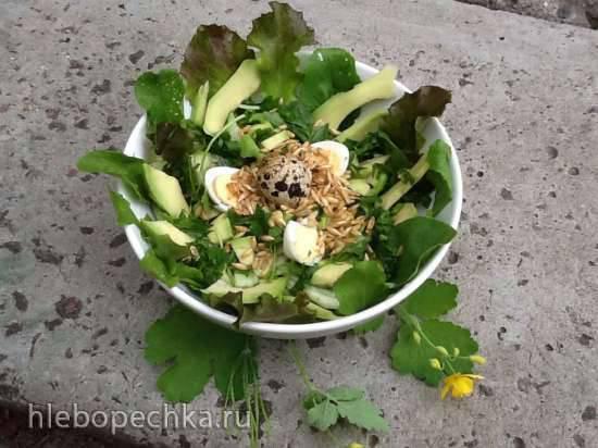 Салат из рукколы, дикого риса (пророщенного овса) и авокадо