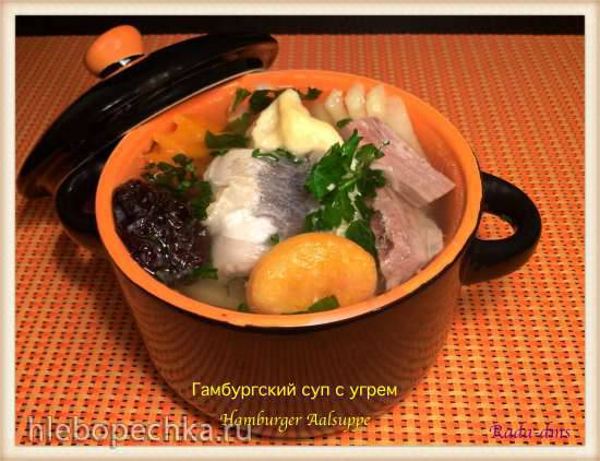 Гамбургский суп с угрем (Hamburger Aalsuppe)