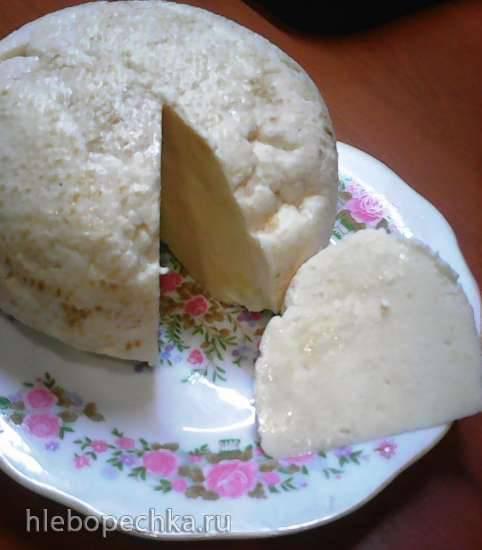 Сыр казачий