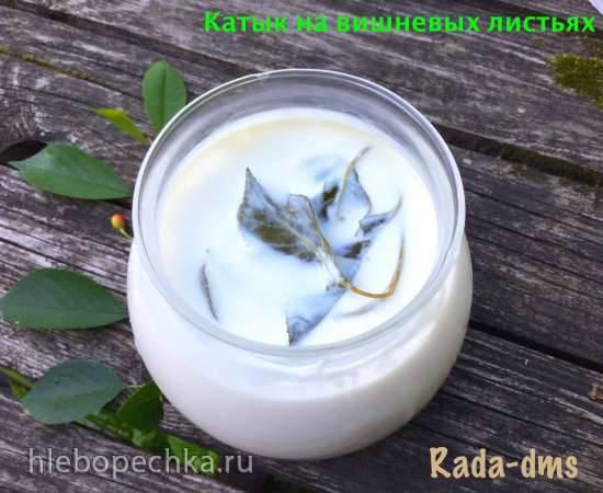 Татарский катык (технология) на вишневых веточках (и другие варианты добавок для цвета и вкуса)