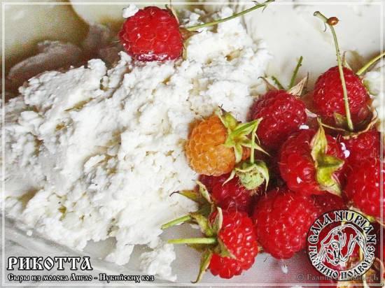 Рикотта (сыр из сыворотки на молоке англо-нубийских коз)