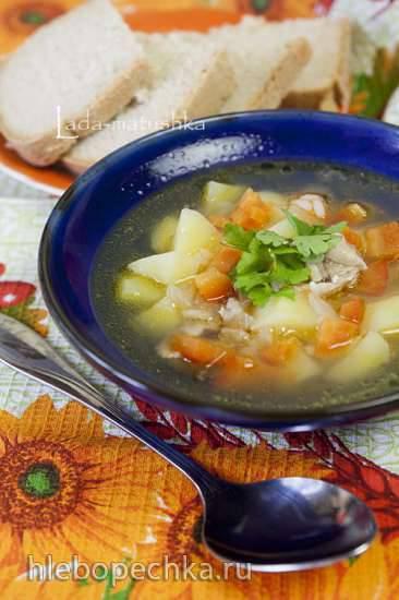 Картофельный суп с болгарским перцем (для Zigmund & Shtain MC-DS42IH)