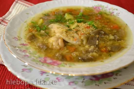 Быстрый суп из красной чечевицы, вяленых помидоров, маринованных сушеных баклажан (Redmond RMC-01)