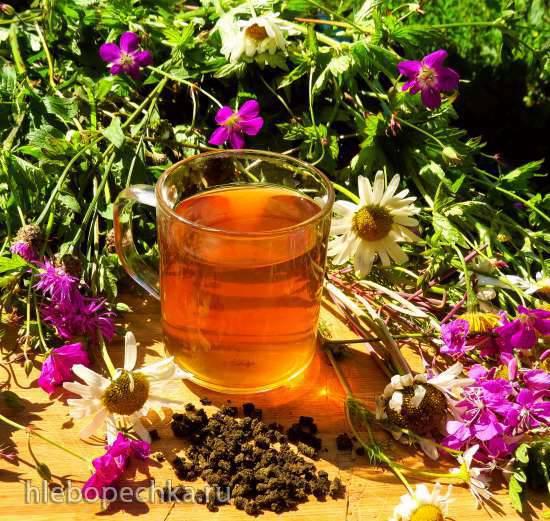 Репешок как растение для чая Ольховый чайный микс