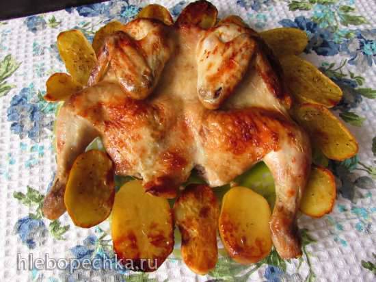 """Конкурс от Steba """"Блюда из духовки"""" Запечённая курица (в маринаде из капустного рассола)"""
