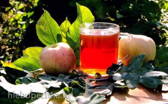 Ферментированный чай Терпкое яблоко