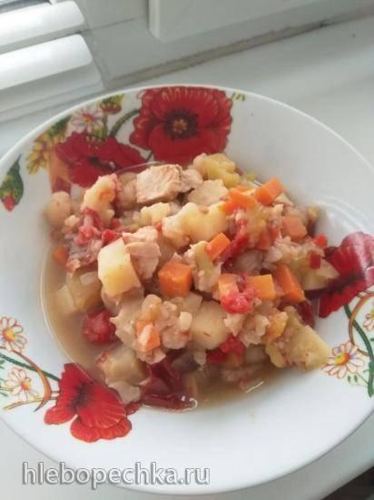 Овощное рагу с индейкой по мотивам Басмы С. Ханкишиева (50 ккал на  100 г в Brand 6051)