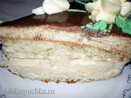 Торт Птичье молоко на желатине (из журнала Работница)