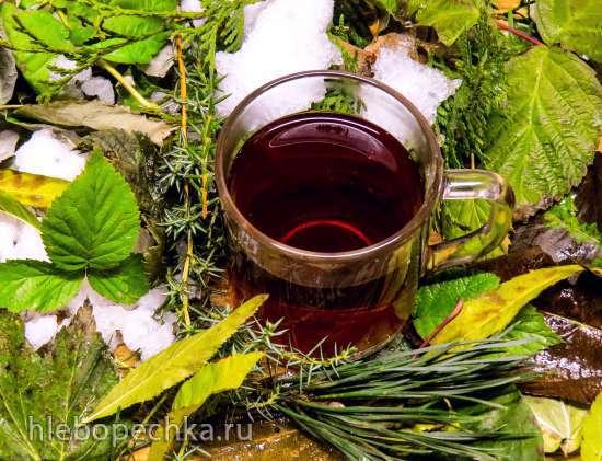 """""""Морозный чай"""" из хвойных и листьев естественной ферментации"""