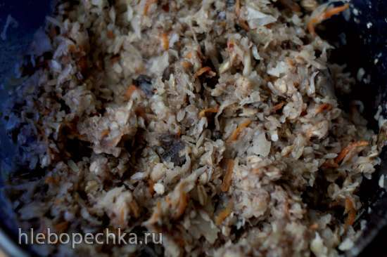 Постные капустные котлеты с грибами на овсяных хлопьях и льняной муке