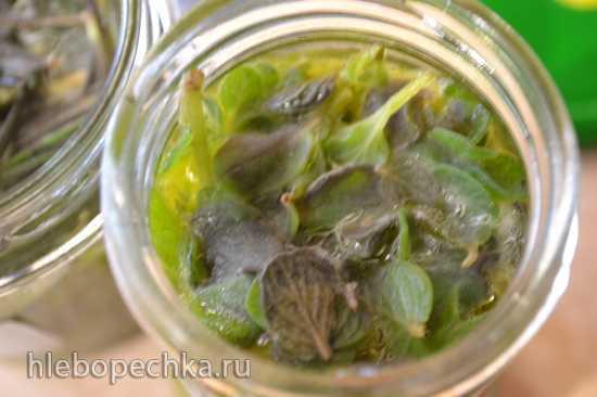 Розмарин и орегано в оливковом масле