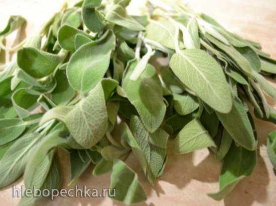 8 лучших лечебных трав и специй