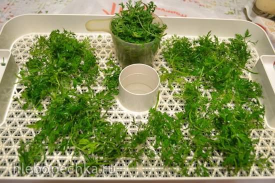 Зелёный порошок из зеленой ботвы
