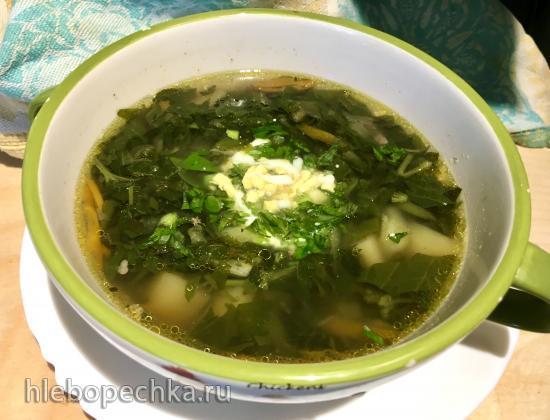 Салат витаминный из  сныти, крапивы, одуванчика и другой ранней зелени