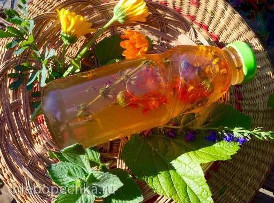 Целебный хвойный сироп из лекарственных и пряных садовых растений