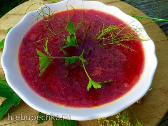 Свекольник горячий на соке из красной смородины с кабачком и яблоком