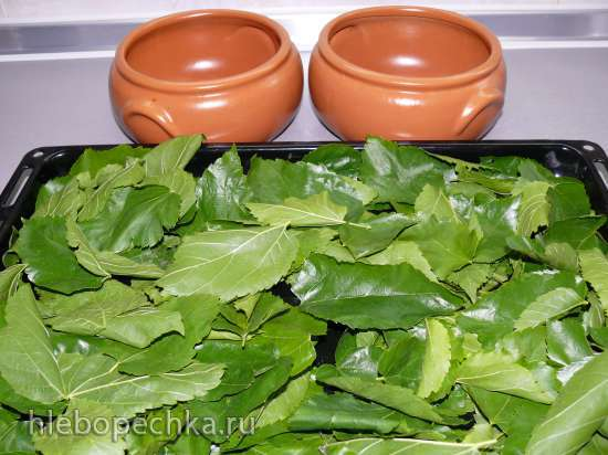 Зеленый чай из листьев садовых и дикорастущих растений + Бонус - сушёные клубничные хвостики