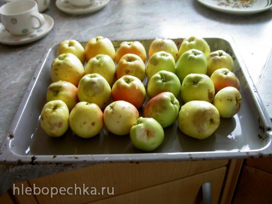 Яблочные сухарики (инфракрасный дегидратор L'equip IR-D5)