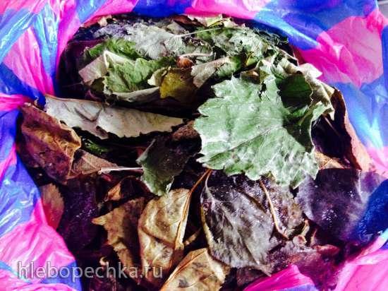 Ферментированный чай из листьев садовых растений с фруктами и ягодами (Фруктовый чай)