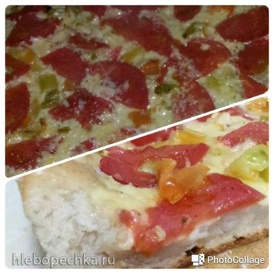 Тесто для пиццы пшенично-ржаной от Панасоник
