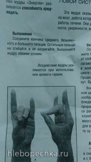Йога для пальцев (мудры)