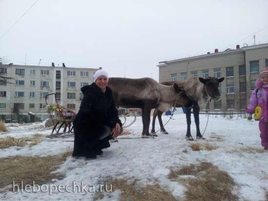 https://hlebopechka.ru/gallery/albums/userpics/128862/20130315_175230~0.jpg