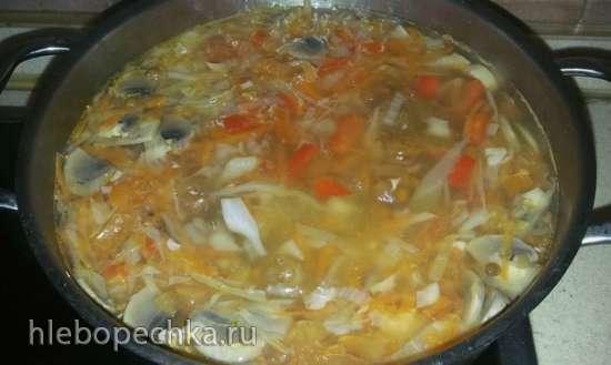 Густой свекольный суп из куриного филе с чечевицей и шампиньонами