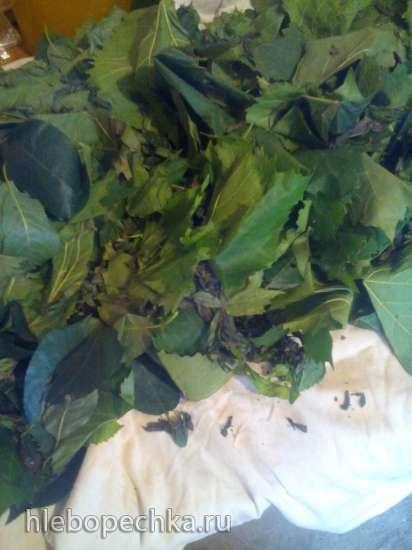 Чай ферментированный Мохито из листьев мяты, винограда и вишни