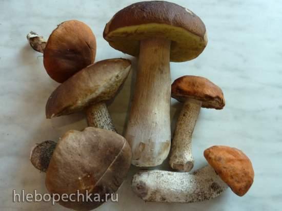 Вятская губница (грибовница)
