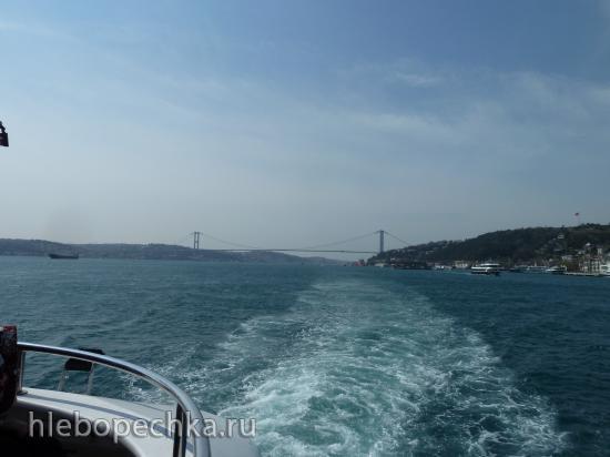 Стамбул между прошлым и настоящим, а также 14-ый ежегодный фестиваль тюльпанов