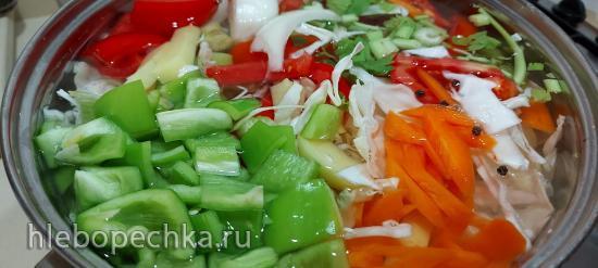 Щи из свежей капусты на Slow Cook в Ninja Foodi